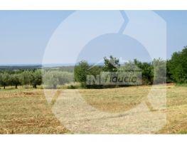 Zemljište, Prodaja, Tar-Vabriga